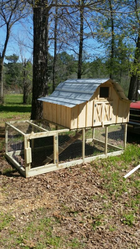 Donna's new chicken coop! A cute little roof/nesting building on top of a spacious little fenced in area.